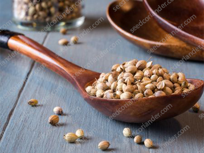 Coriander Seed For Sale