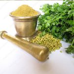 coriander seed wholesale