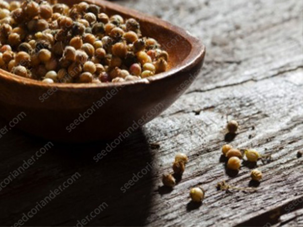 coriander seeds price in philippines