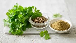Coriander seeds 2019 price