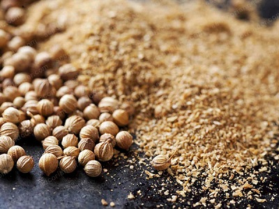 market price of coriander seeds in hyderabad 2019
