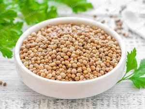 Coriander seeds company price in india 2019