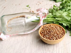 coriander seeds price in Bangalore & Delhi