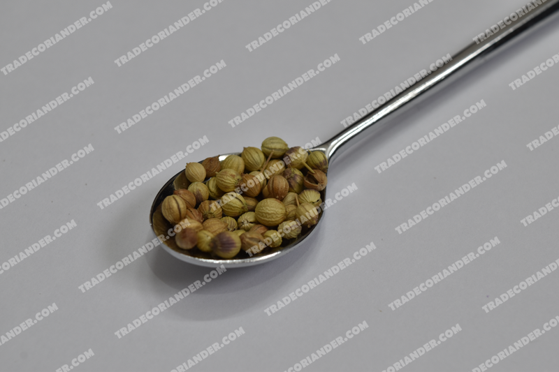 Which Farmers are Successful in Coriander seed Cultivation?