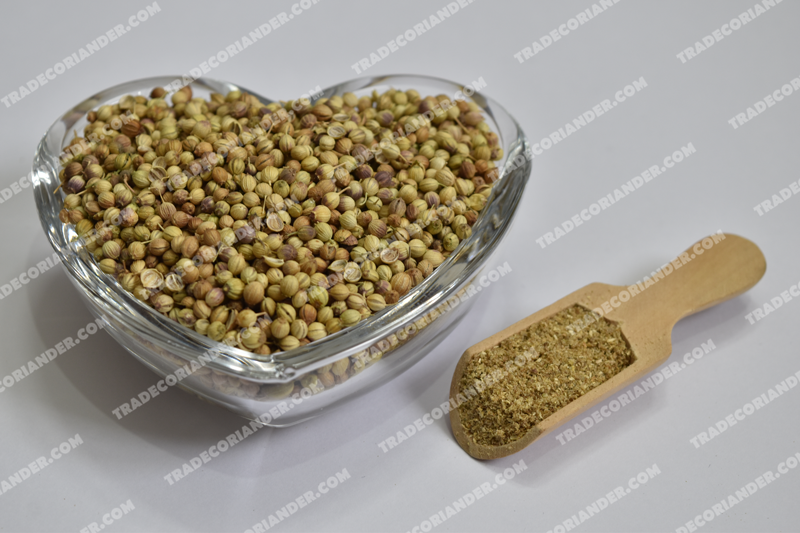 Famous Different Coriander Seeds Type