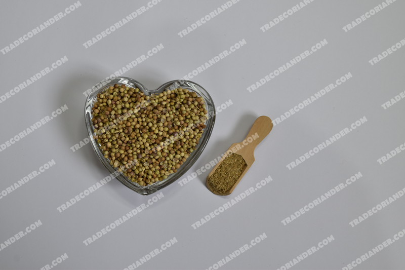 Discounted coriander seed price today