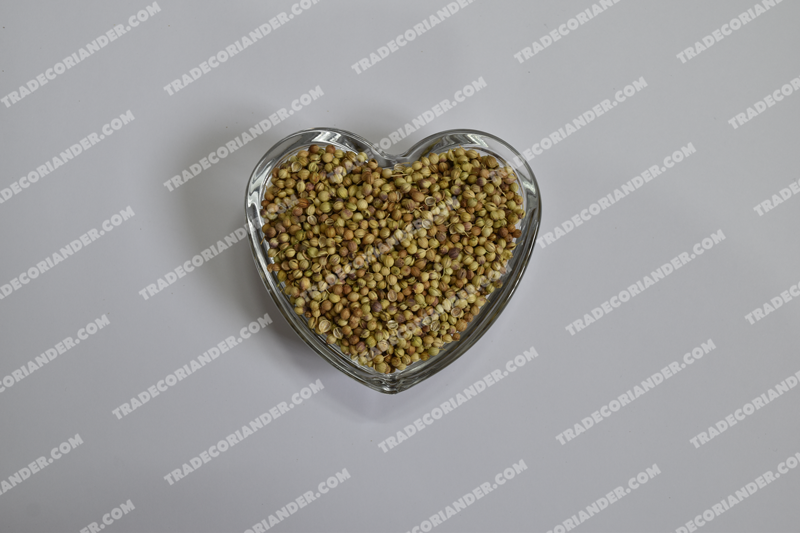 Benefits of using coriander seed Indian