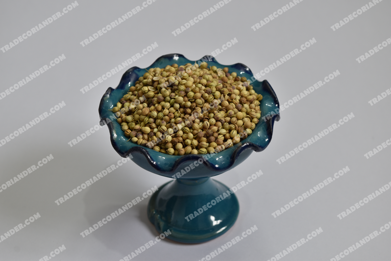 How much is coriander seed price trend?
