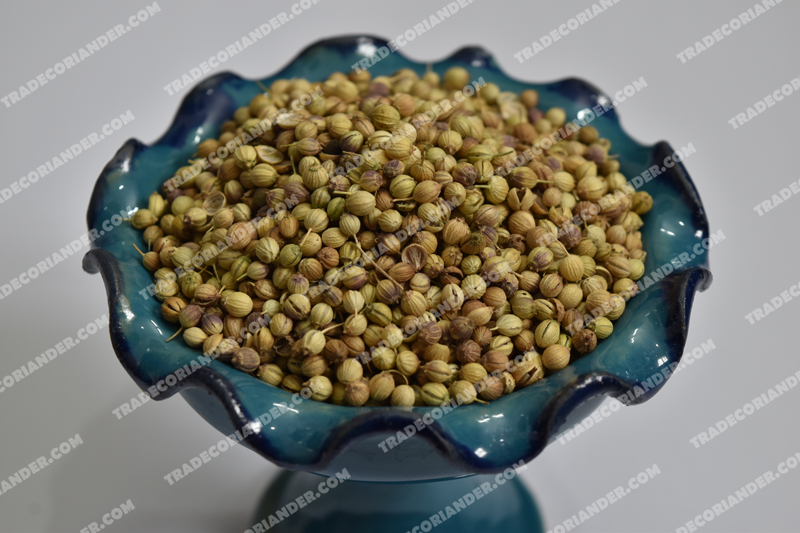 Which coriander seeds type is better?