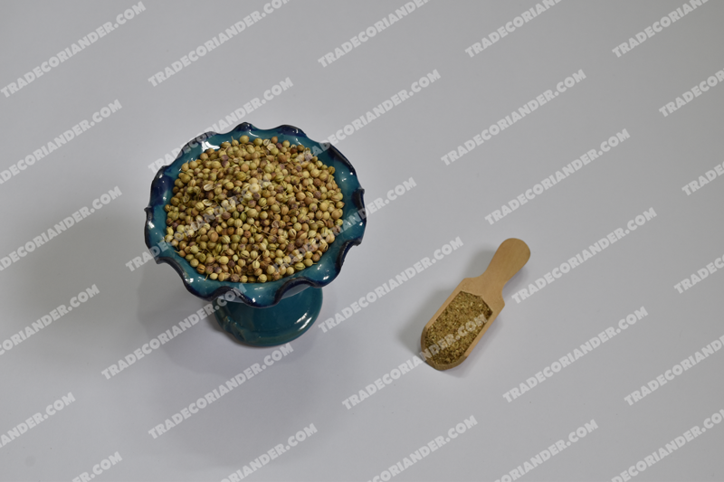 Affordable coriander seeds sale & Buy