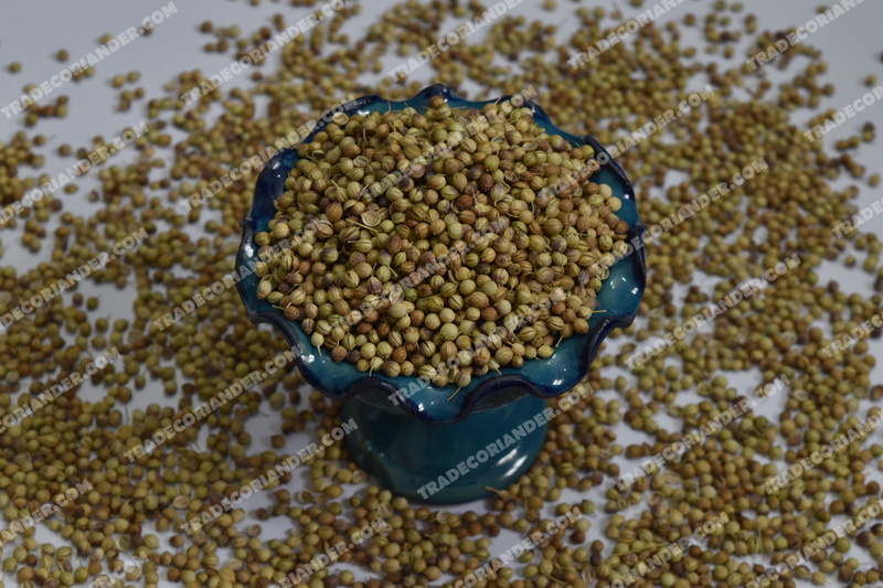 Where to find fresh coriander seed suppliers?