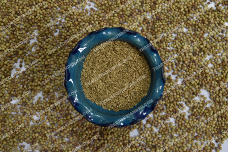 Coriander Spice Application in India