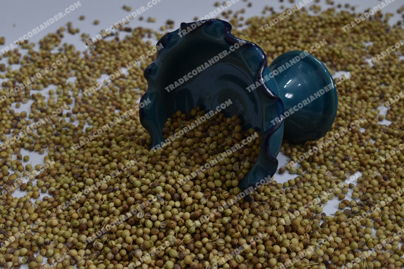 Is it better to Export whole coriander seed?