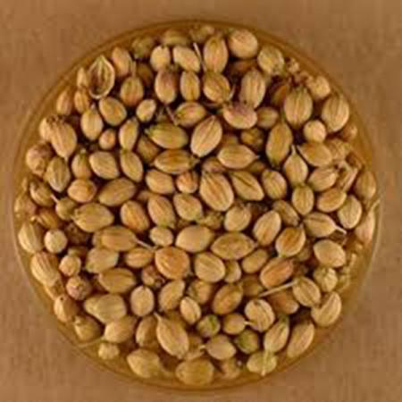 Coriander Seeds Buy |Affordable Buys in 2019